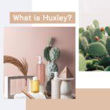 田中みな実さんも愛用!サハラ砂漠のサボテンから生まれたスキンケアブランド『Huxley(ハクスリー)』って知ってる?